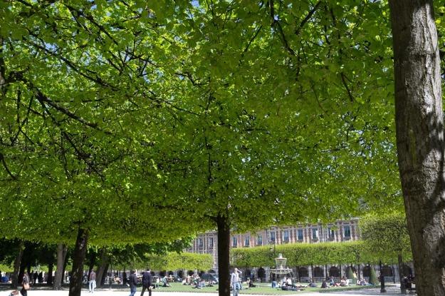 Place-des-Vosges-1-of-1.jpg