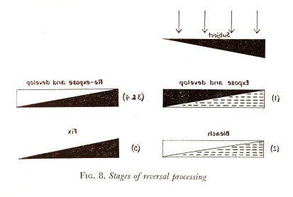 Stages of Reversal